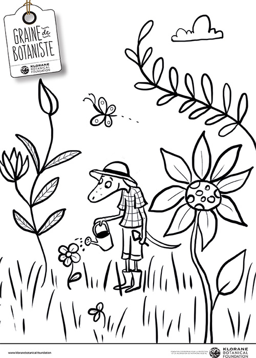 "coloriage ""Zag plongé dans la jungle"""