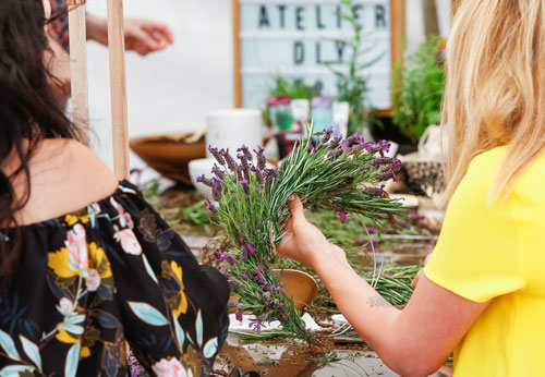 ateliers botaniques botany for change