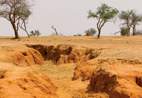 desertification in senegal